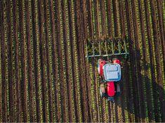 Microplastics found in fertilisers being used on gardens and farmland