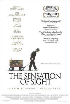 The Sensation of Sight (2006)