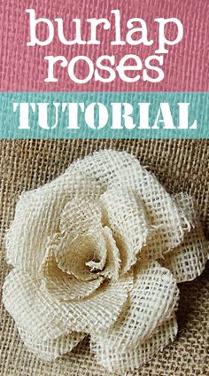Step by step instructions for these cute burlap roses! Such a fun DIY project