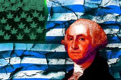 US Government Made Poisonous Marijuana to Kill Citizens? - http://rollstroll.com/2017/03/16/us-government-made-poisonous-marijuana-to-kill-citizens/ #Cannabis, #Drugs, #Maps, #Marijuana, #MedicalMarijuana, #Pot, #Smoke, #Smoking, #Weed