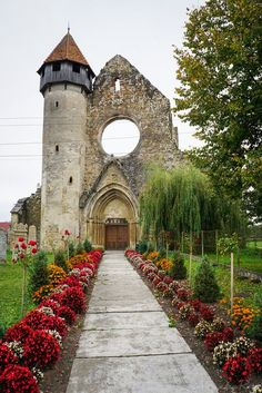 Old cistercian monastery, Carta village, Transylvania, Romania, www.romaniasfriends.com