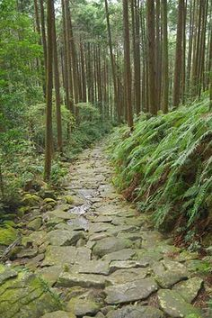 Magose-toge Pass, Owase, Mie Prefecture