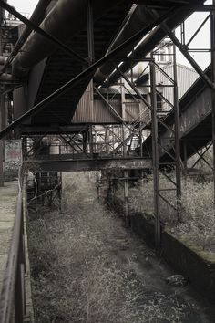 Abandoned, Iron, Explore, Left Out, Ruin, Exploring, Steel