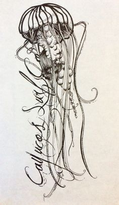 Jellyfish. Ink drawing, designed for a shirt sleeve, by Julie Mazza of A Picture Paints.