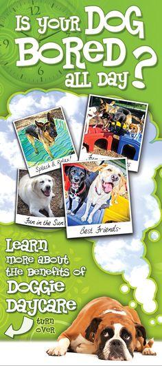 Karnik - Informational Rack Card - Doggie Daycare