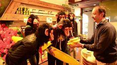 mr monkey party! Full promo video  on Vimeo