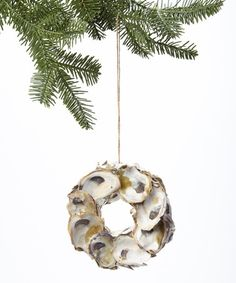 Look what I found on #zulily! Oyster Shell Wreath Ornament #zulilyfinds