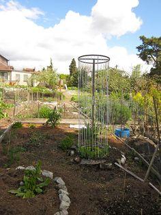 Food Styling Tips Pea Trellis, Garden Trellis, Garden Beds, Garden Art, Garden Design, Patio Trees, Outdoor Classroom, Rooftop Garden, Edible Plants