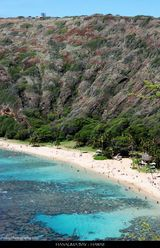 Hanauma Bay, Hawaii  I went there with my friends. The fish there are not afraid of humans. It was like a paradise. :)