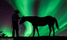 My dad works 12 hour days building roads and still comes home to ride every night. That is his time and he loves it. I captured this image of him getting his horse ready one morning and we went out and chased northern lights that night. This is how I'd love to see him enjoying his time with his horses.