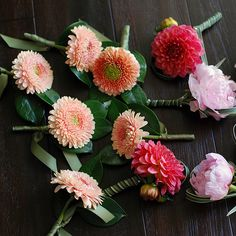 gerber a (gerund); dahlia and peony boutonnieres - not the norm due to size but you can usually use a closed bud or small side bloom off the main stem. Dahlia would be very fragile and need care or a double for the reception. Gerbera Wedding, Wedding Bouquets, Wedding Flowers, Wedding Arrangements, Flower Arrangements, Corsage And Boutonniere, Boutonnieres, Flowers For Men, Christian Bride