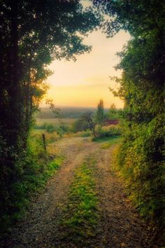 Country road, take me home . to true serenity. Beautiful World, Beautiful Places, Parcs, Take Me Home, Pathways, Belle Photo, Beautiful Landscapes, Wonders Of The World, Countryside