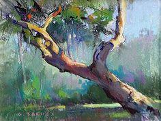 Live Oak Study. pastel. Barnes Studios