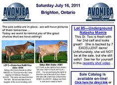 Avonlea Genetics keeps an active and up-to-date website that has the latest news.  More importantly they also do a newsletter to keep their followers up to date on what is going on as well as upcoming consignments or sales.