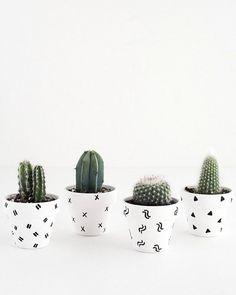 25 maneiras DIY simples para personalizar e pintar vasos de terracota Succulent Pots, Planting Succulents, Planting Flowers, Cactus Vert, Cactus Cactus, Green Cactus, Mini Plants, Small Potted Plants, Pot Plants