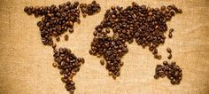 The coffee world in two words: Arabica & Robusta