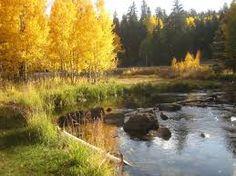 Duck Creek Roland Lee