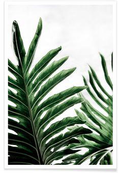 Leaves 1 als Premium Poster door Mareike Böhmer | JUNIQE