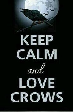 Keep Calm and Love Crows. One for sorrow, Two for joy Three for a girl, Four for a boy Five for silver, Six for gold Seven for a secret never to be told. Crow Art, Raven Art, Crow Or Raven, One For Sorrow, Keep Calm And Love, My Love, Vikings, Blackbird Singing, Quoth The Raven