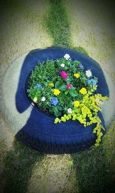 Begining phase of my tire garden :)