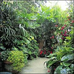 containerized foliage and flowers create an entire garden in just a few feet of space