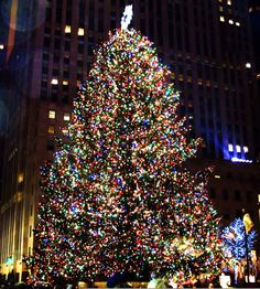 Weekly Photo Challenge: Twinkle - Rockefeller Center Tree | Mirth and Motivation
