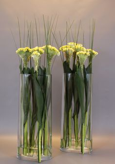 Green Inspiration #Aspidistra www.adomex.nl Green powers! #Celosia #steelgrass