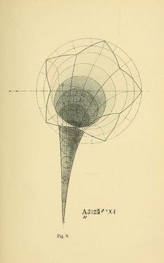 www.dataisnature.com  Geometrical Psychology - Benjamin Betts