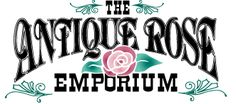 The Antique Rose Emporium: One of the best places for people that love roses. Brenham, TX