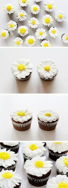 schoko cupcakes dekoriert mit weißen gänsenblumen