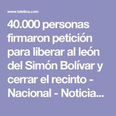 40.000 personas firmaron petición para liberar al león del Simón Bolívar y cerrar el recinto - Nacional - Noticias | Teletica