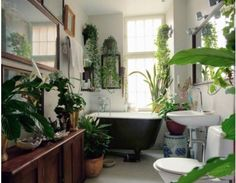 I like the bathroom design but maybe a few less plants