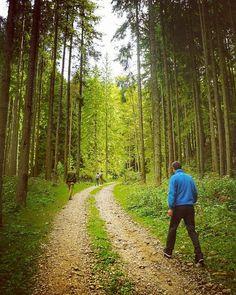 Vama Buzăului – probabil cea mai curată şi frumoasă zonă din România   TravelGirls.ro Mai, Country Roads, Travel, Instagram, Viajes, Destinations, Traveling, Trips