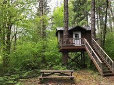 Tiny Treehouse Cabin on Acres in Belfair - Fairy Lights Terrace Treehouse Masters, Treehouse Cabins, Treehouse Kids, Adult Tree House, Play Houses, Tree Houses, Cozy Backyard, Tree House Designs, Build A Playhouse