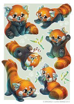Red Panda Sticker sheet by Dragibuz on DeviantArt Cute Animal Photos, Cute Animal Drawings, Animal Sketches, Kawaii Drawings, Cute Drawings, Red Panda Cute, Panda Love, Red Panda Cartoon, Anime Animals