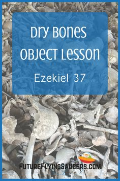 What do dry bones and two sticks have to do with Jesus? Use this Ezekiel 37 Bible Object Lesson to teach children that God is trustworthy and that new life comes through Jesus. | Bible Object Lesson for Kids | Creative Bible Teaching | Homeschool Bible Lessons