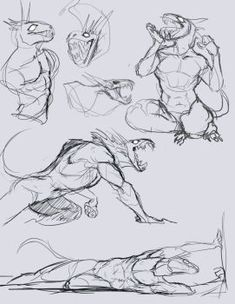 Animal Sketches, Animal Drawings, Cool Drawings, Art Sketches, Monster Concept Art, Monster Art, Creature Concept Art, Creature Design, Poses References