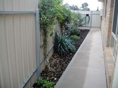 Narrow Garden Next To House Google Search Landscape
