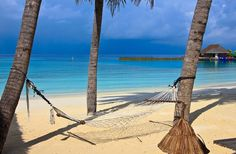 Who'd rather be right here on this hammock in the Maldives? Just you and this freakishly clean crisp warm turquoise water and the sound and smell of the Indian Ocean  The Maldives  #LucalBeach #Beachlife #Beach #Praia #Ocean #Waves #Explore #Nature #Wanderlust #Paradise #Travel #Travelphotography #Blue #Beautiful #ClearWater #Turquoise #Holiday #Summer #Vacation #Reef #Clouds #Cloudporn #Skyporn #Sky #Sunset #Pordosol #Palmtrees  #LucalBeach #Maldives #IndianOcean Beachlife Beach Praia Ocean…