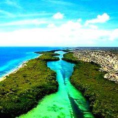 Una de las playas más bellas del planeta se encuentra en Venezuela sin contar sus bellezas, pero este lugar es increíble. Isla La Tortuga, espacio para la biodiversidad!