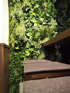 Grüne Wand und Pflanzenwand KAIMUG