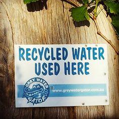 Sustainable Sisters Team: Grey Water Gator Installed