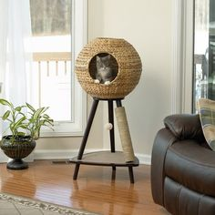 Sauder Woodworking Natural Sphere in. Cat Tower - With the Sauder Woodworking Natural Sphere Cat Tower there& finally cat furniture you& actually want to have in your living room. Its tripod stand. Cool Cats, Cool Cat Trees, Diy Cat Tree, Cat Scratching Tree, Scratching Post For Cats, Sauder Woodworking, Cat Towers, Cat Scratcher, Cat Room