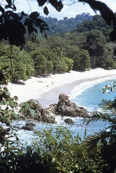 The national park of Manuel Antonio is on the Pacific coast of Costa Rica