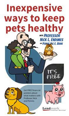 Pets are a great source of comfort, companionship, fun and love. But when they're sick or hurt, they can also be a drain on your finances. Keeping pets healthy is the best way to curb vet bills that can be hundreds — even thousands — of dollars. Whether you have a hamster, fish, bird, dog, cat, bunny, or even an iguana, everyday preventative measures can keep your animal friend happy. Find steps here: https://plus.google.com/114512026339711588540/posts/hd5b9VeUMDp
