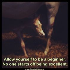 Riding is always learning you are a beginner in some way.