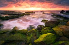 Green by Joshua Zhang on 500px