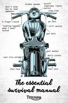 Triumph Bonneville, Triumph Tr3, Triumph Bikes, Triumph Bobber, Bobber Motorcycle, Girl Motorcycle, British Motorcycles, Triumph Motorcycles, Vintage Motorcycles