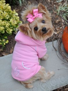 Dog Hoodie - Carnation Pink #dogclothes at http://www.doggieclothesline.com