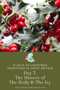 Get The History of Decorating With Holly & Ivy Lesson. Your family will learn the history and have fun with creating their own wreaths and Christmas greenery decorations. It's all included in the free lesson. Christmas Party Food, 12 Days Of Christmas, Diy Christmas Gifts, Christmas Decorations, Christmas Greenery, History For Kids, Christmas Traditions, Great Britain, Diy Gifts